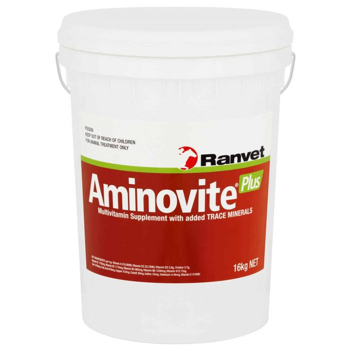 Vitamin & Mineral for horses