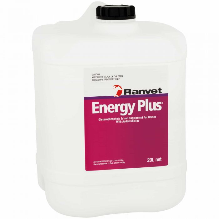 Energy Supplement for horses