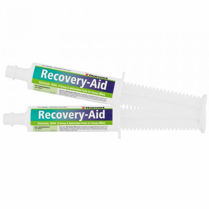 Recovery Paste for Horses