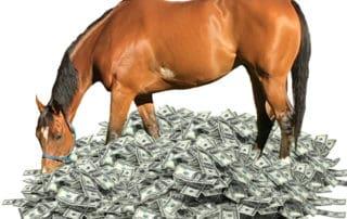 Horse Costs