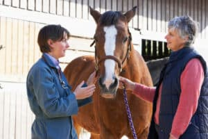 Careers in the Equine Industry
